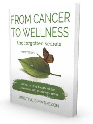 From Cancer to Wellness Paperback