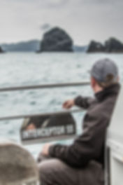 Boat trips to St Kilda
