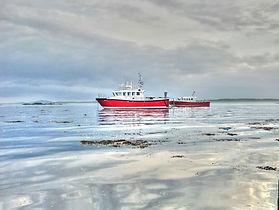 Boat trips to St Kilda - Leverburgh, Isle of Harris