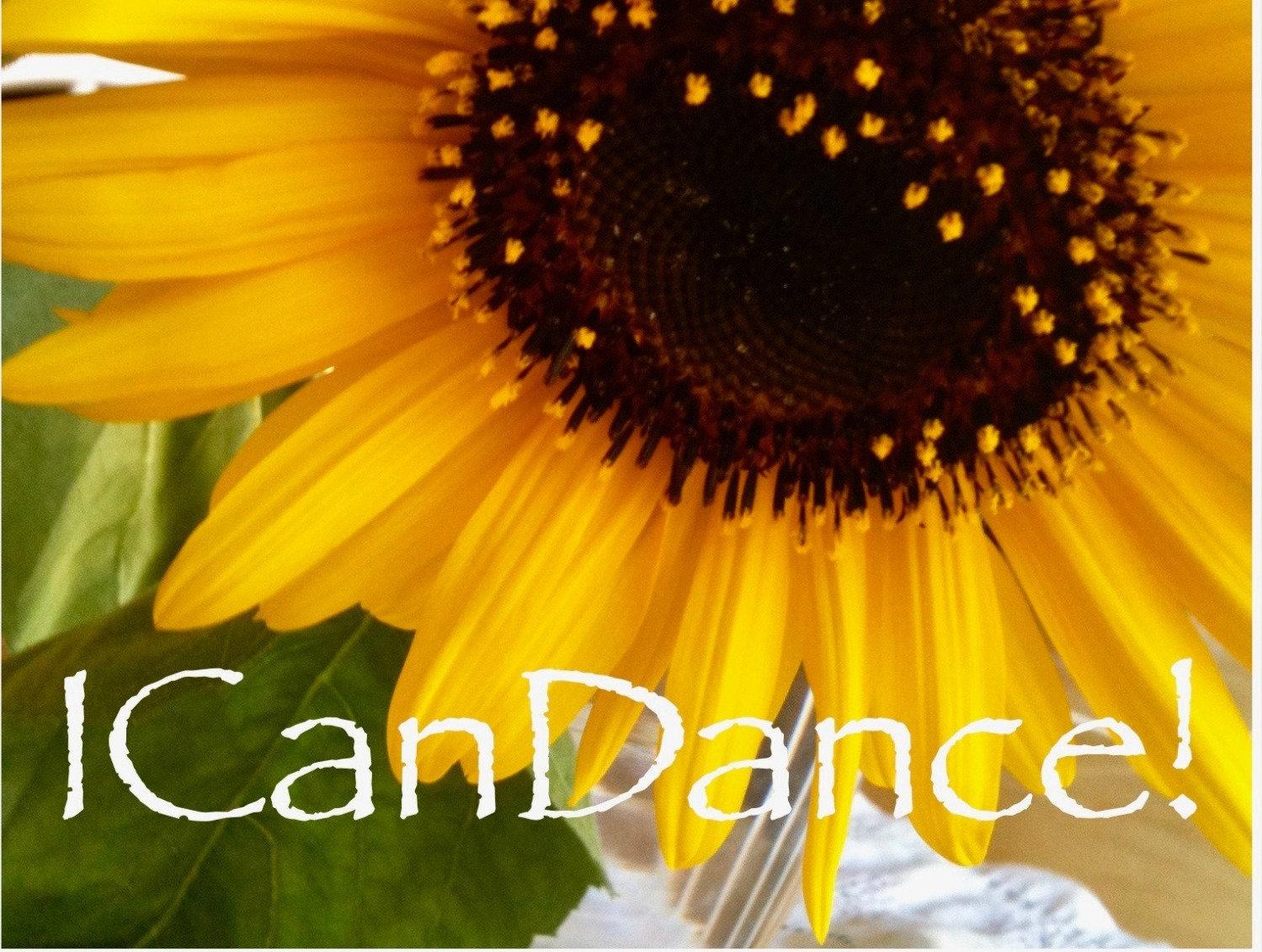 Private Dance Class via Zoom