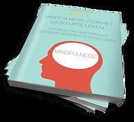 Mindfulness-cursus-cover-compressor.png