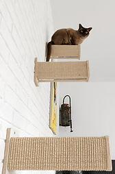 Kratzpfosten für Katze