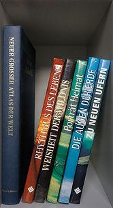 Kratzbaum als Bücherregal