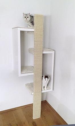 2 Katzen im weissen Cuba Kratzbaum