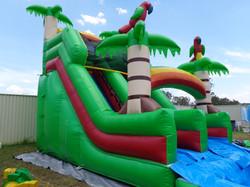 Jungle Water Slide