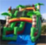 Jungle Themed Dry Slide