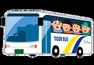 タイガーバス