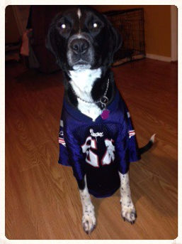 Benny roots for the Patriots