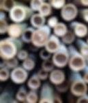 bamboo-poles.jpeg