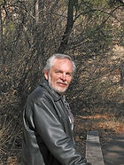 WSP author Micheal Llewellyn