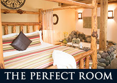 Choose the Perfect Room