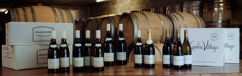 Visit Auckland Wineries