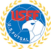 United States Futsal Federation (USFF) Logo. Alianza Futsal participates in the United States Futsal