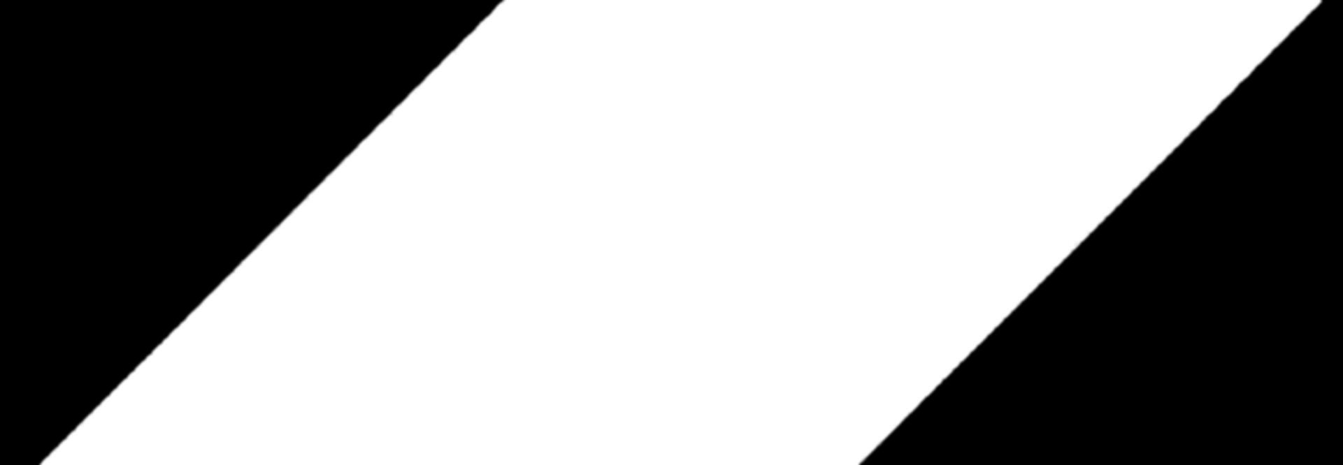 white rhombus_edited.png