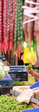 Color explosion in the Desertir Market