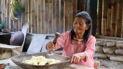 Making an Ecuadorian Chicha (Saliva-Fermented Yuca Drink)