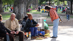 Selling medicinal miracles in the park