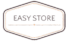 Easy Store Logo.png