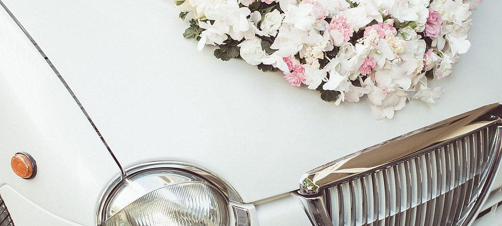 Wedding Car 2015-11-17-8:18:4