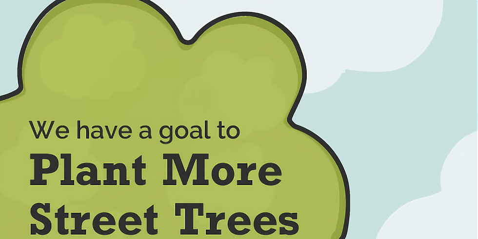 Street Tree Planning