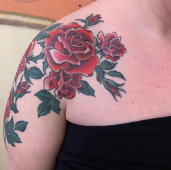 Climbing Roses🌹 Almost 2 weeks healed b