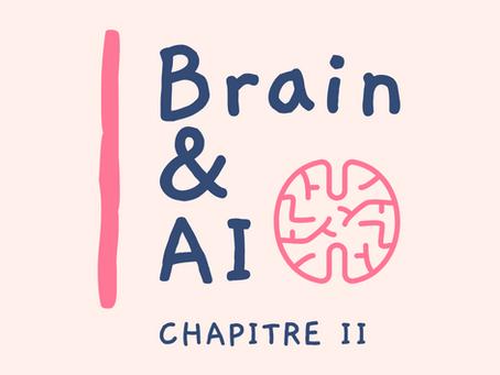 Ar.1: Comprendre le mécanisme de la vision dans notre cerveau en 4 étapes