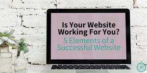 successful website web developer