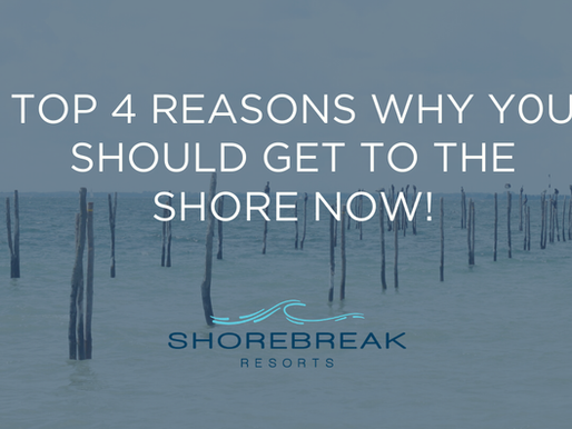 Top 4 Reasons To Get To The Shore Now