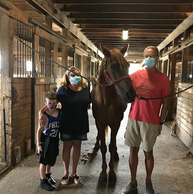 What it Means to Sponsor a Horse at Ryerss Farm.