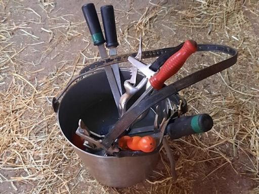 Horse dental tools