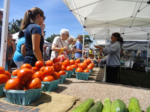 Farmers Market - Every Wednesday (June 30th - September 8th) from 8:00am-1:00pm at Tabernacle Grounds.
