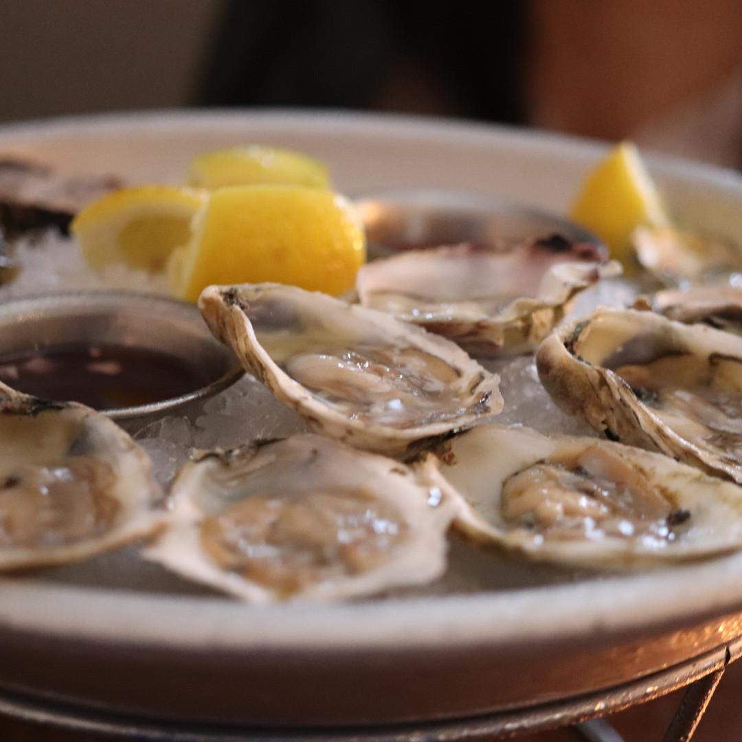 Oysters_5924.jpg