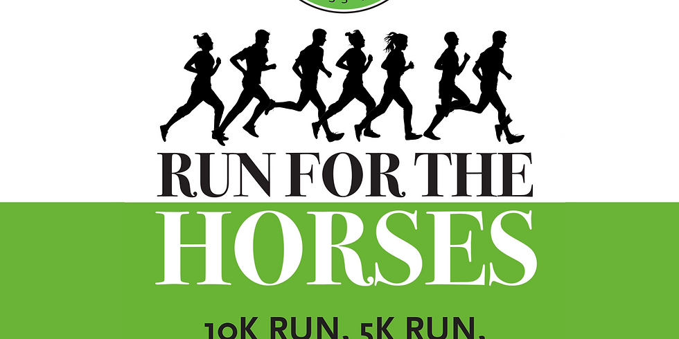 Run For the Horses