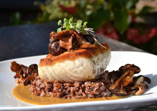 seared-bass-with-sauteed-mushrooms--wild