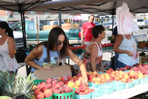 Farmers Market - Every Tuesday (June 22nd - September 7th) from 8:00am-1:00pm at Excursion Park