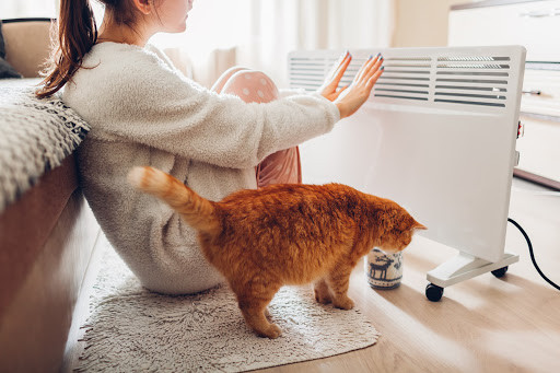 Girl warming hands on heater with cat