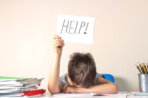Student needing help