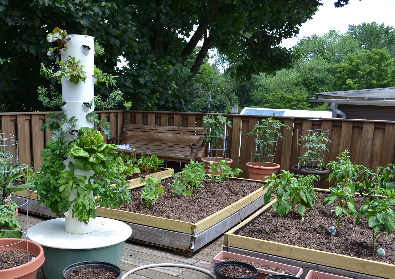 rooftop-garden_18436218493_o.jpg