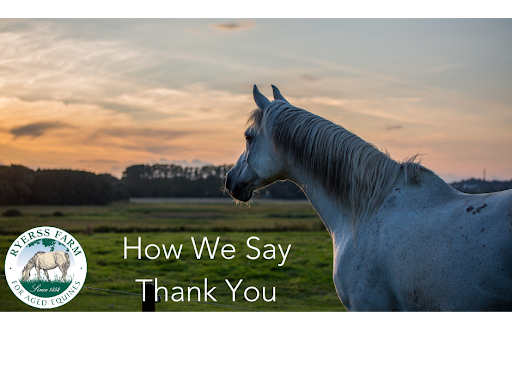 How We Say Thank You