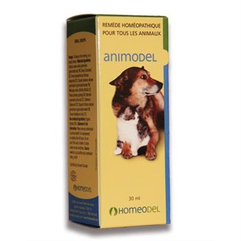 Animodel #7 diarhée-gastro