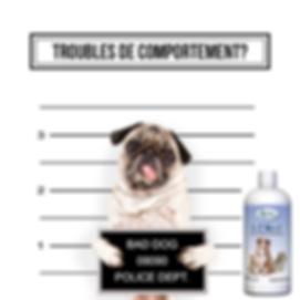 TROUBLES DE COMPORTEMENT_.png