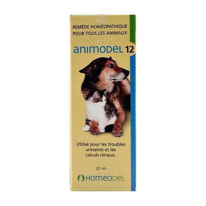 Animodel #12 - Troubles urinaires, calculs rénaux