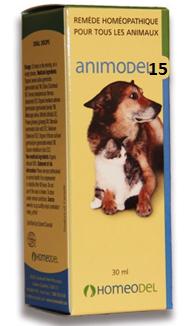Animodel #15 Allergies saisonnières