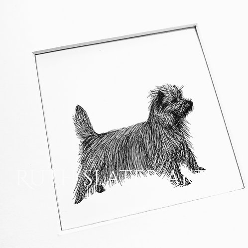 Cairn Terrier (Standing) Original