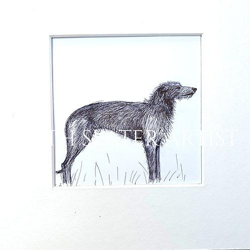 Deerhound (Standing) Original