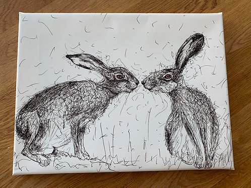 Kissing Hares Canvas