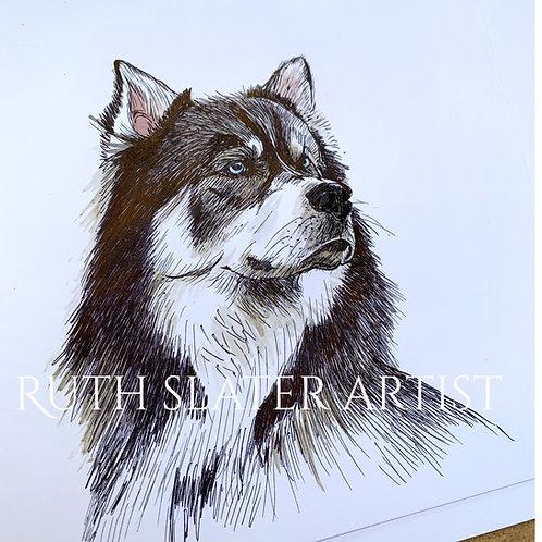 Siberian Husky Original