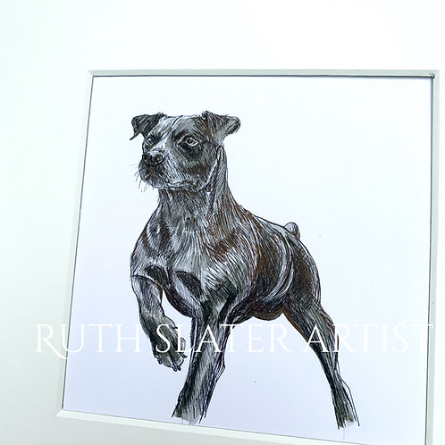 Patterdale Terrier Original