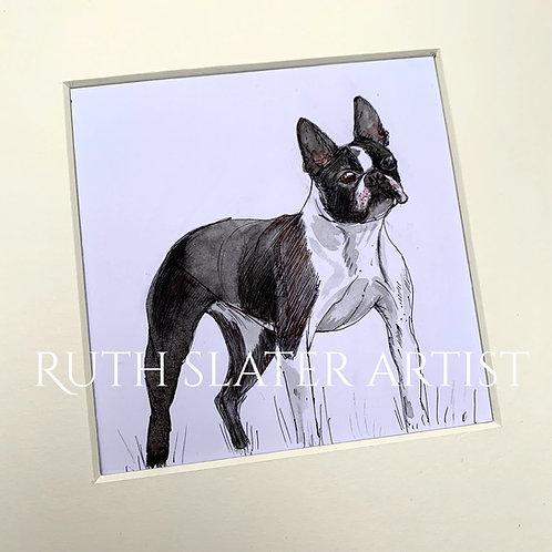 Boston Terrier Original