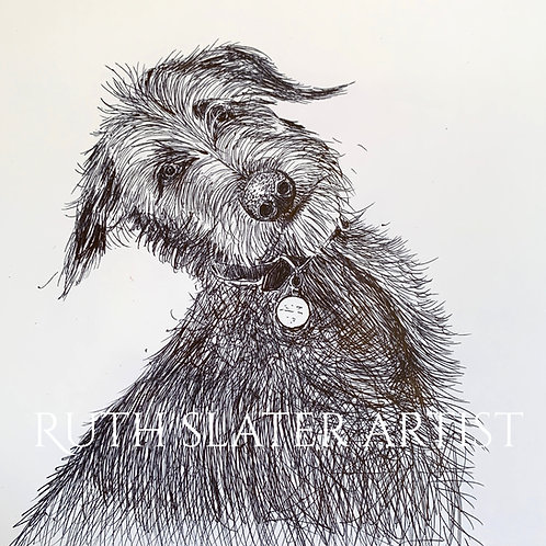 Deerhound Puppy Original